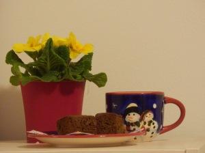 Čokoladne kocke, biskvit od čokolade, čokoladni kolač