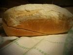 domaći kruh, kruh koji se ne mijesi, jednostavni kruh, recept za kruh