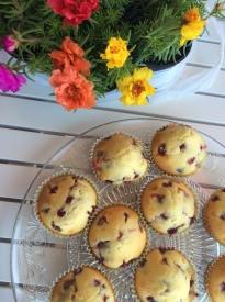 muffini sa jagodama, šumske jagode, cupcakes s jagodama, cupcakes